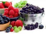 Як зберегти вітаміни: сушіння, консервування, заморожування, зацукровування