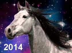 Гороскоп на 2014 рік Коня